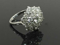 An 18ct white gold nineteen stone diamond cluster ring, 6g, approximately 3ct, size N.