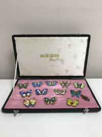 A set of twelve enamelled butterfly brooches on gilt metal, boxed (12)