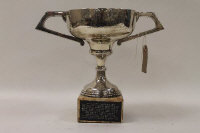 A silver trophy, Sheffield 1931, on a pink granite base.