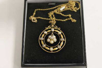A 9ct gold Edwardian seed pearl pendant on 9ct gold chain.