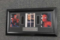 Three limited edition 345mm filmcel montages - Shrek, Spiderman and Whinney the Pooh, all parts framed. (3)