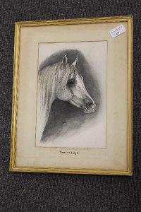 Benita Bammer : Eastern Magic Arabian Stallion, watercolour, 18 cm x 27 cm, signed, dated, framed.