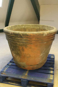 An oversized terracotta pot, diameter 110 cm.