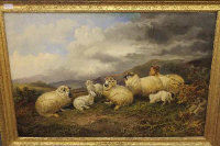 Richard Ansdell : Sheep with lambs in a mountainous landscape, oil on canvas, signed, 60 cm x 90 cm, labels verso, framed.