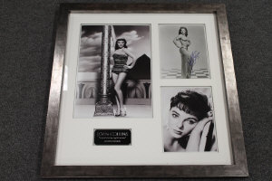 A montage celebrating Joan Collins, comprising three monochrome images (one signed), and mounted with a plaque, 64 cm x 60 cm, framed.