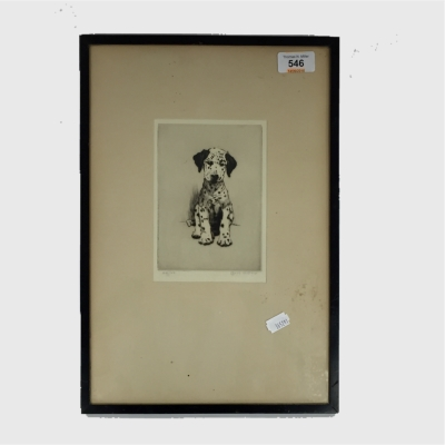 Cecil Charles Aldin : Loopy - The Dalmatian Puppy, etching, signed in pencil, numbered 49/150